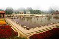 Shalimar garden in full bloom.jpg