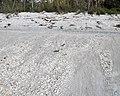 Sheetwash shell deposit on marine beach (Cayo Costa Island, Florida, USA) (25751816373).jpg