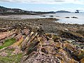Shore Line at the Largs Pencil, Largs - geograph.org.uk - 499424.jpg