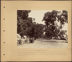Shubra Avenue by Boston Public Library.jpg