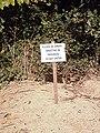 Sign by badger sett - Primrose Wood - geograph.org.uk - 537124.jpg