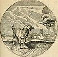 Silenus Alcibiadis, sive, Proteus - vitae humanae ideam, emblemate trifariàm variato, oculis subijciens (1618) (14745818354).jpg