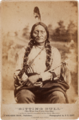 Sitting Bull by Goff, 1881.png