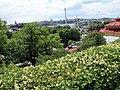 Skansen, Djurgården Island, Stockholm, Sweden 2011 - Murat Özsoy 58.jpg