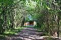 Skulyn Kovelskyi Volynska-Nechymne nature reserve-Lesya Ukrainka's museum-1.jpg