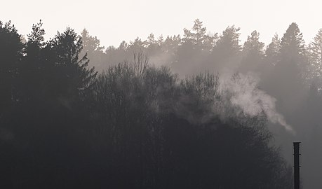 Smoke from a small chimney in fog.jpg