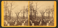 Soldiers' cemetery, Arlington, by Kilburn Brothers 3.png