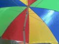 Sonnenschirm-vierfarbig.png