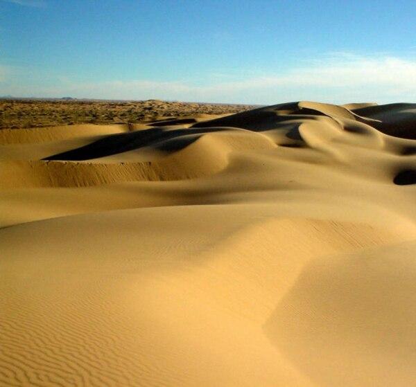 Sonora desert of altar