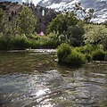 South Fork John Day Wild and Scenic River (36265634982).jpg