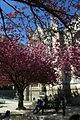 Square Jean-XXIII, Paris 13 April 2015 003.jpg