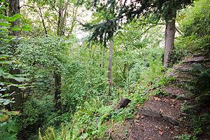 St. Mark's Greenbelt - Walking trail in St. Mark's Greenbelt