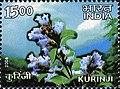 Stamp of India - 2006 - Colnect 158972 - Kurinji.jpeg