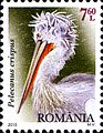 Stamps of Romania, 2010-43.jpg