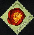 Stamps of Romania, 2011-48.jpg