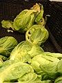 Starr-070730-7838-Brassica oleracea-brussels sprouts-Foodland Pukalani-Maui (24263573873).jpg