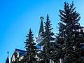 State Bank Building Nizhny Novgorod.jpg