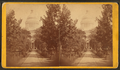 State Capitol, Madison, Wisconsin, from Robert N. Dennis collection of stereoscopic views 3.png