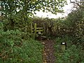Stile on the Footpath. - geograph.org.uk - 1029176.jpg