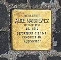 Stolperstein Unter den Linden 6 (Mitte) Alice Markiewicz.jpg