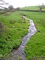 Stream near Kenton - geograph.org.uk - 158607.jpg