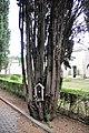 Sulmona 2013 by-RaBoe 078.jpg