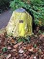 Sundial in Drum Castle gardens - geograph.org.uk - 1021212.jpg