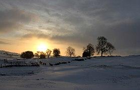 Sunrise Sacheveral Farm (geograph 2794995).jpg