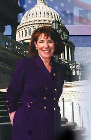 Susan Davis (politician) - Earlier photo of Davis