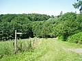 Sussex Border Path at Dane Hill Brook - geograph.org.uk - 27107.jpg