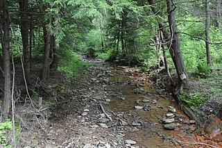 Knox Township, Jefferson County, Pennsylvania Township in Pennsylvania, United States