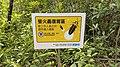 Taipei Daan Park - Small Ecological Pool - 20180715 - 02.jpg