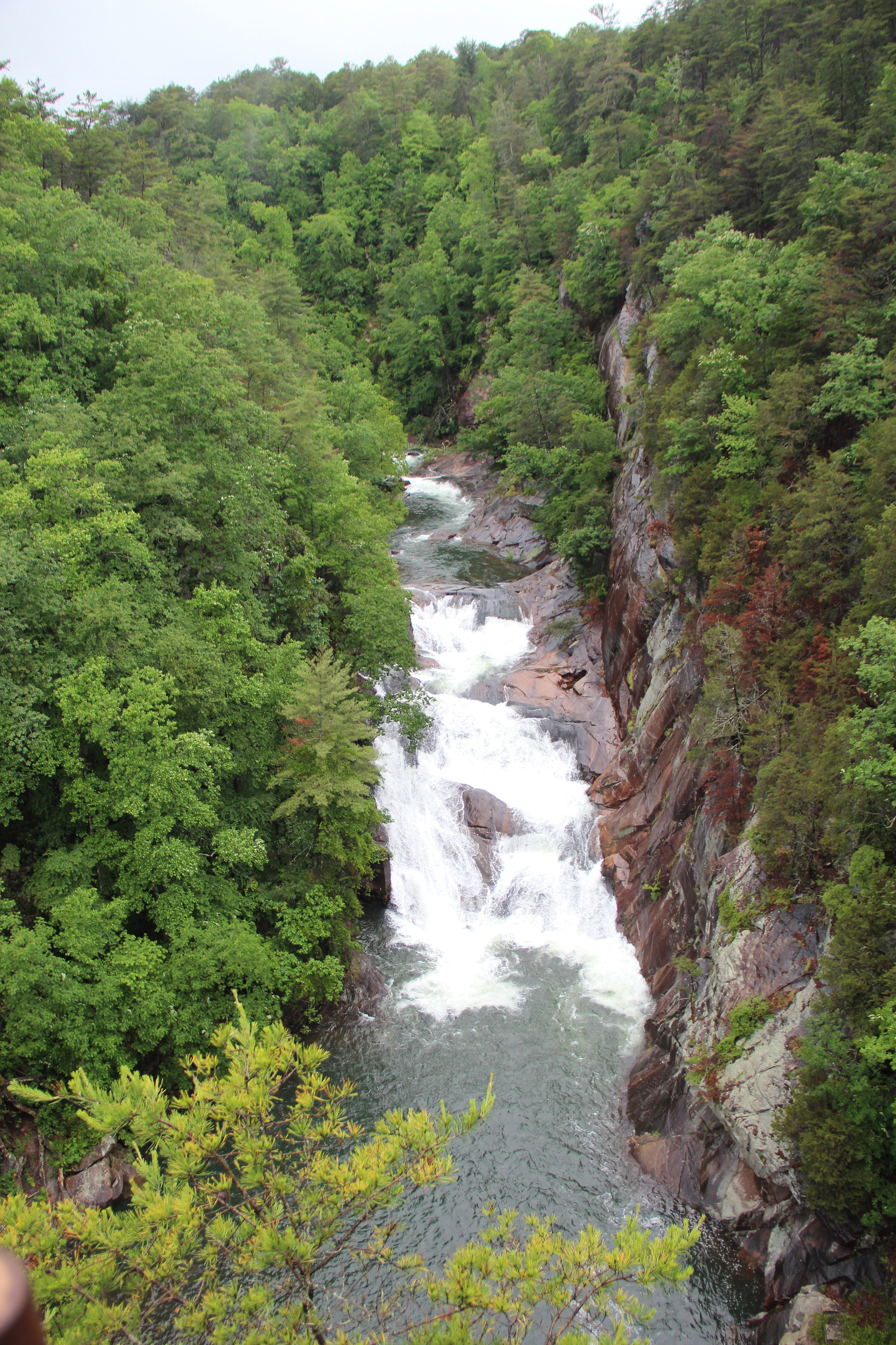 tallulah falls dating Pet notice:  for animals' safety, pets are not allowed on the gorge floor, sliding  rock trail, and hurricane falls staircase to the suspension bridge leashed pets.