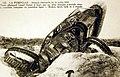 Tank allemand détruit, La Pompelle 1918.jpg