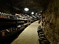 Taragawa Cellar.jpg