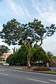 Tawau Sabah 1Malaysia-02.jpg