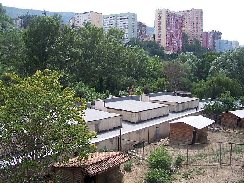http://upload.wikimedia.org/wikipedia/commons/thumb/d/d1/Tbilisi_Zoo_%281%29.jpg/800px-Tbilisi_Zoo_%281%29.jpg