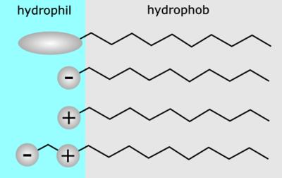 Rappresentazione dei tensioattivi. Dall'alto verso il basso: non ionici, anionici, cationici, anfoteri.