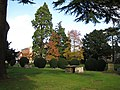 Tewkesbury topiary - geograph.org.uk - 1037440.jpg