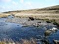 The Afon Conwy - geograph.org.uk - 770920.jpg