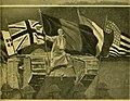 The American Museum journal (c1900-(1918)) (18158642892).jpg