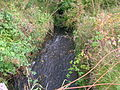 The Bannoch Burn at Goldcraigs.JPG