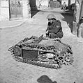 The British Army in Italy 1944 NA13896.jpg