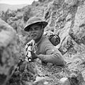 The British Army in Italy 1944 NA17507.jpg