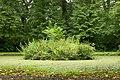 The Castle Gardens, Antrim (3) - geograph.org.uk - 943247.jpg