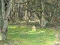 The Culbone Stone - geograph.org.uk - 1239556.jpg
