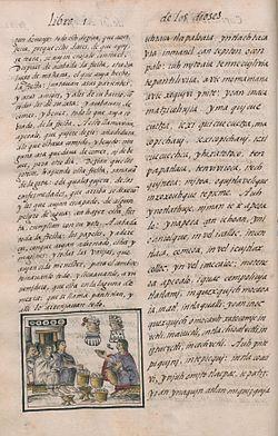 The Florentine Codex (folio 80).jpg