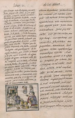 The Florentine Codex (folio 80).jpg