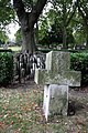 The Hardy Tree, St Pancras (Old Church), Churchyard - geograph.org.uk - 1507171.jpg
