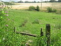 The High Weald Walks head through farm fields towards Pembury - geograph.org.uk - 1409260.jpg